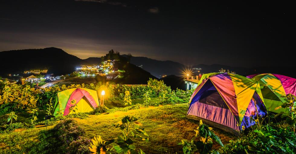article How to Run a Campsite image