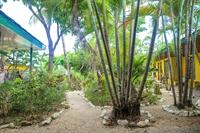 boutique hotel playa tamarindo - 3