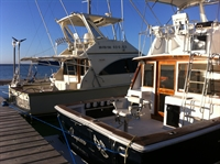 google top-rated fishing charters - 2