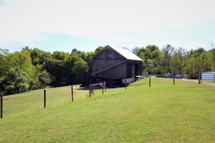 pet resort horse farm - 5