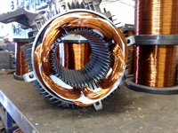 reputable thriving electric motor - 1