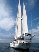 sailboat tours turnkey business - 2