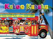 Established And Profitable Nightlife Buses Aruba Business For Sale