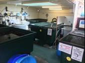 Specialist Koi Carp And Aquatic Centre In Worcester For Sale